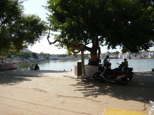 vue d'un café au bord du lac de Pushkar